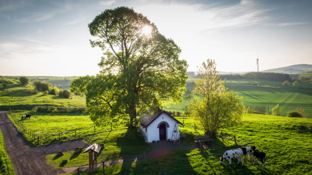 rural summer landscape in germany - aerial - ранчо стоковые видео и кадры b-roll