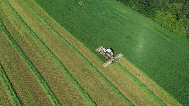 Rural Tractor Mowing Fresh Green Grass For Hay In Agricultural Field Aerial View
