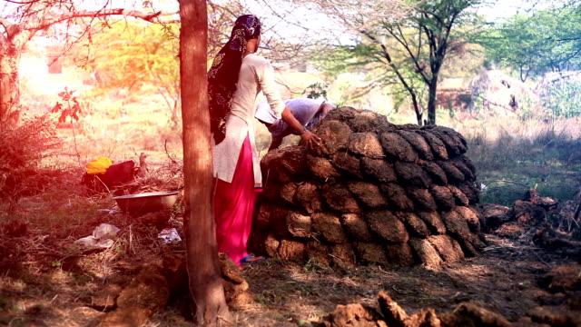 Rural women working outdoor - video