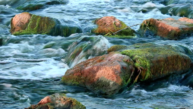 rushing river - rohrblattinstrument stock-videos und b-roll-filmmaterial