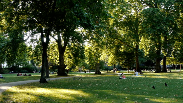 Russell Square London, Backlit Park Scene video