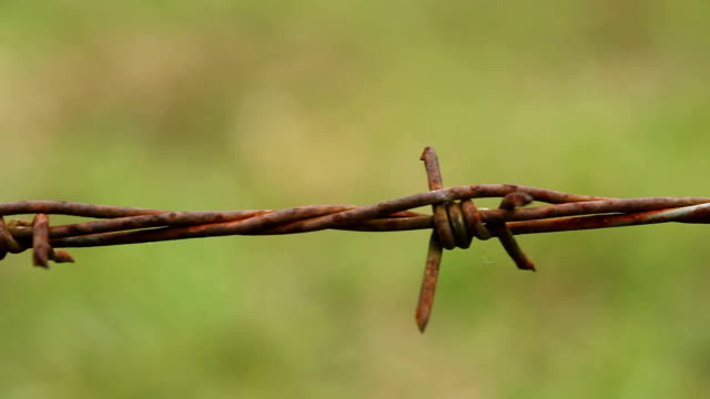 rusty barbed wire video