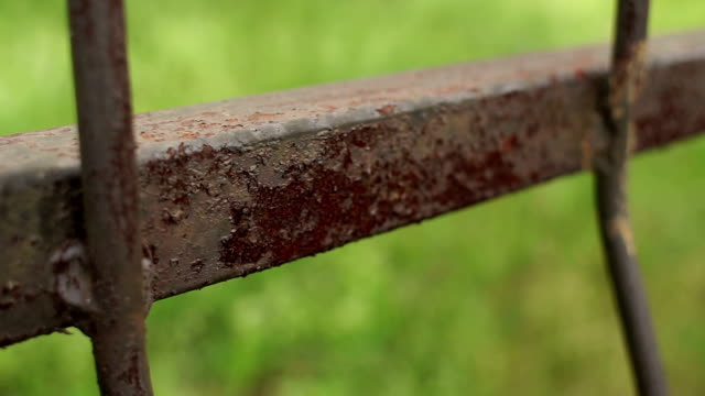 Rusty iron fence close-up on blurred background. video