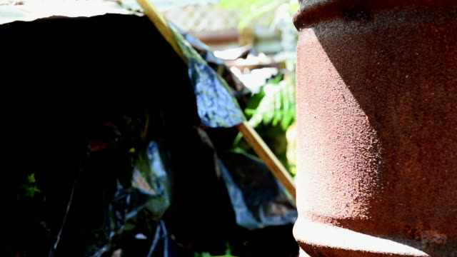Rusty oil barrel and junk in a garden. Slide left to right. Close up.