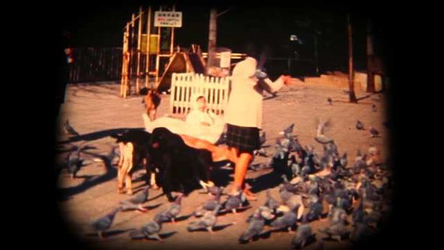 60's 8mm footage - feeding animals in a park