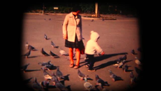 60 年代の 8 mm 映像 - 公園内の鳥餌をやる - 郷愁点の映像素材/bロール
