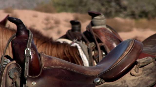 saddles video