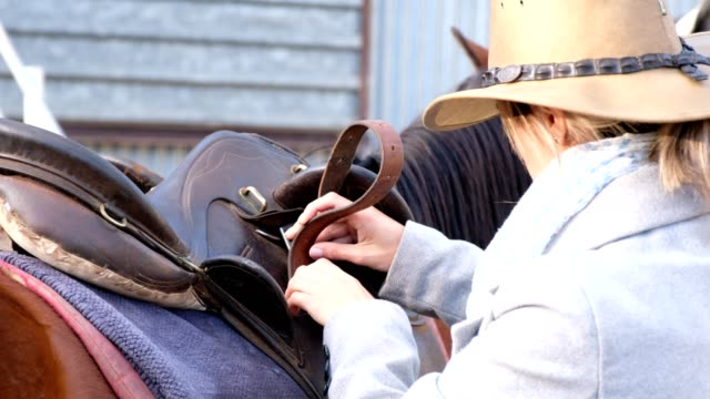saddling up my horse for the ride - sella video stock e b–roll