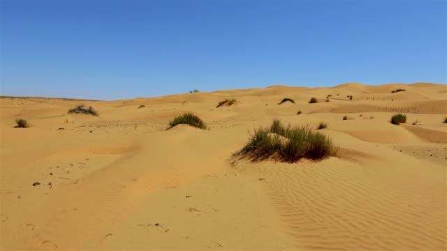 Sahara Desert nearby the Grand Erg Oriental , Tunisia