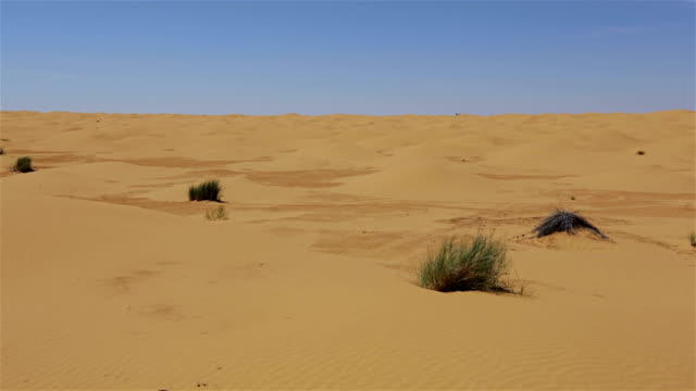 Sahara Desert of Tunisia video