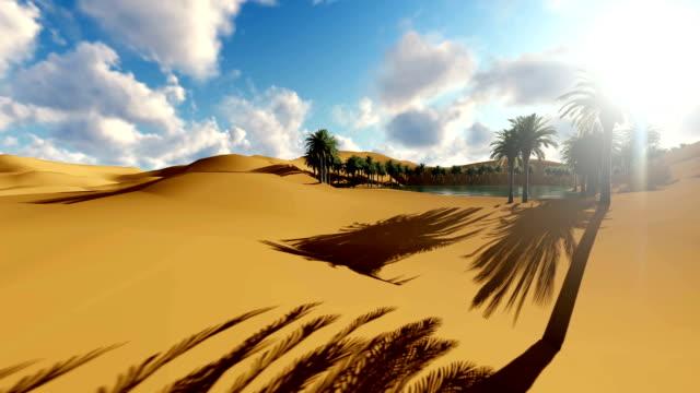 Sahara Desert Sand Dunes Palms Oasis Sunset video