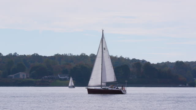 Sailboat Cruising through River on Windy Day Sailboat Cruising through River on Windy Day regatta stock videos & royalty-free footage