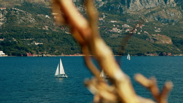 A sailboat on the horizon in the beautiful Adriatic sea video