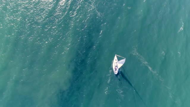 Sailboat Sailboat in ocean, Santa Cruz Bay, California mast sailing stock videos & royalty-free footage