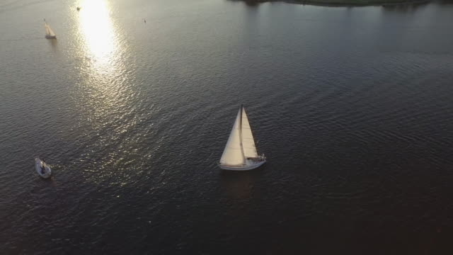 Sailboats at sunset video