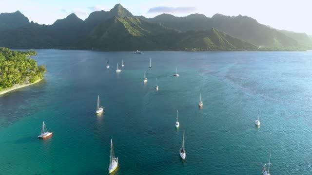 segelboote segeln in einer blauen lagune berge in moorea, in französisch-polynesien. berge sind mit palmen in der nähe der küste des pazifischen ozeans bedeckt. reise tropenkonzept - luftaufnahme mit einer drohne - 4k - reisebüro stock-videos und b-roll-filmmaterial