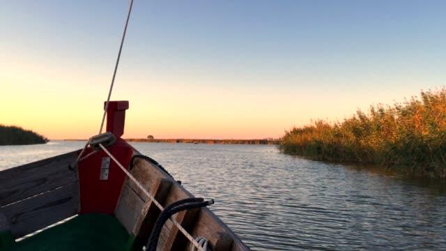 """segeln bei sonnenuntergang in der lagune """"la albufera"""", in valencia, spanien - schilf stock-videos und b-roll-filmmaterial"""