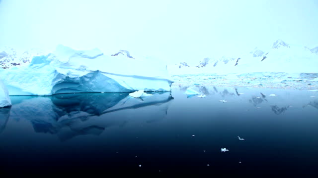 Sailing past icebergs in Antarctica video