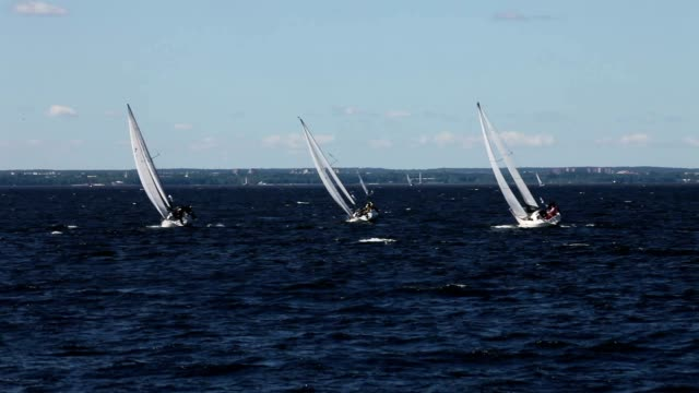 sailing race HD1080:   sailing race tailwind mast sailing stock videos & royalty-free footage