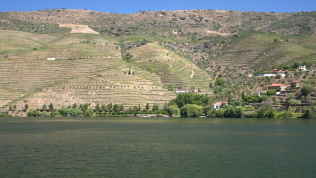 Sailing towards the terraced vineyard on the banks of the Douro river in Portugal - video