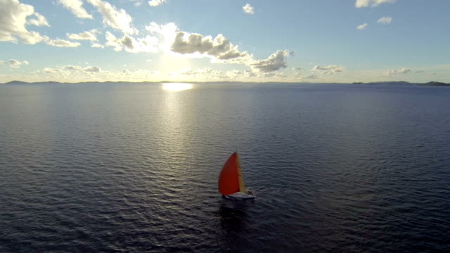 Sailing with sailoboat at sunset video