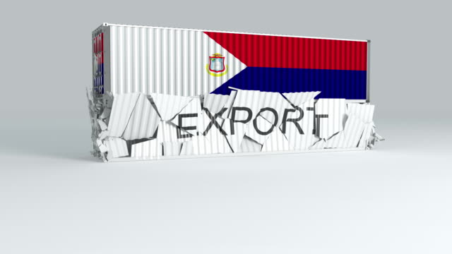 saint martin container with  flag falls on top of a container labeled export - saint martin caraibi video stock e b–roll