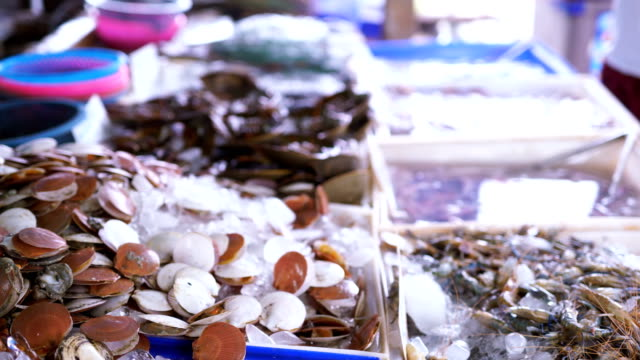 Sale of fish and seafood in Thailand video