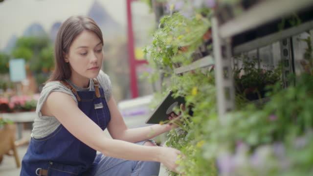 Saleswoman using digital tablet while examining plants at nursery video