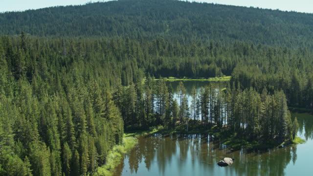Salmon Lake, California - Drone Shot