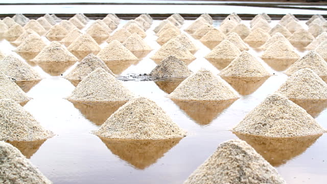Salt collecting farm video