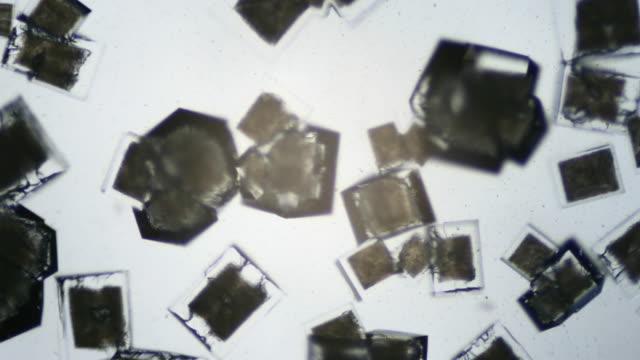 uhdv cristallizzazione salina - salt video stock e b–roll