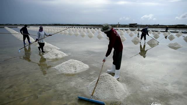 Salt farming video