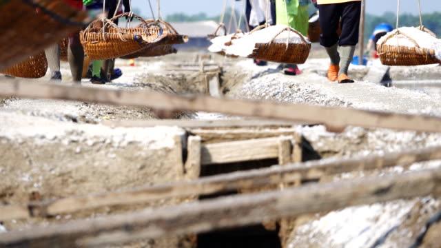 Salt farming, Worker gather salt go to barn