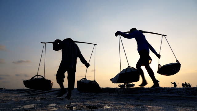 slo mo salt farming, worker gather salt go to barn - соль минерал стоковые видео и кадры b-roll