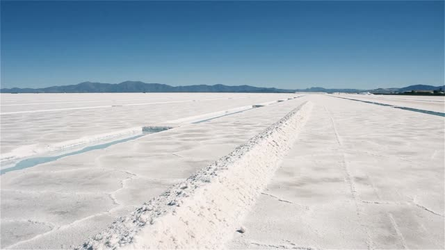 Salar de la Argentina. - vídeo