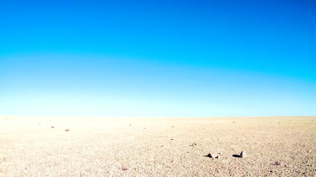 ws ds 塩パンでエトーシャ国立公園 - 乾燥点の映像素材/bロール