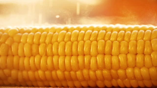 Salting freshly cooked boiled corn, slow motion video video