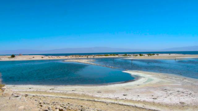 vidéos et rushes de plage de la mer de salton-riverside, ca - lac salé