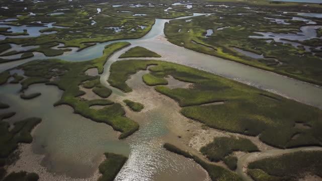 vídeos y material grabado en eventos de stock de estuario de agua salada - estrecho