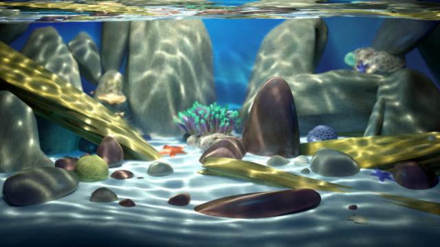 saltwater paradise seamless loop - akvaryum stok videoları ve detay görüntü çekimi