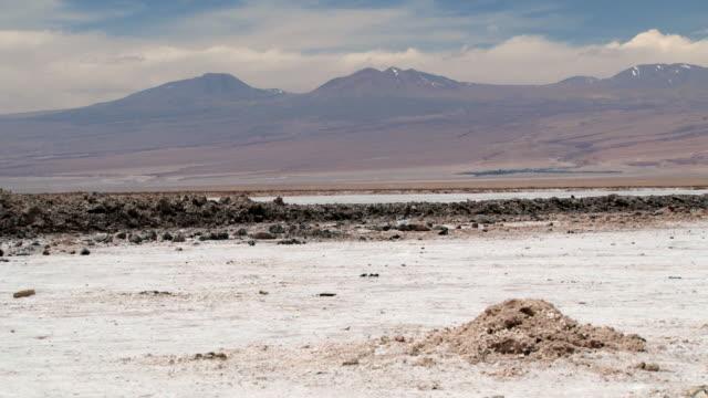 vidéos et rushes de surface désert salée avec des andes à l'arrière-plan dans le désert d'atacama. - lac salé