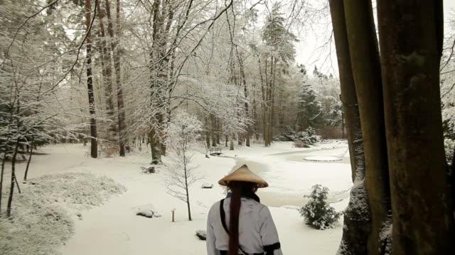 samurai walking samurai crane shot ninja stock videos & royalty-free footage