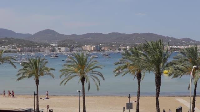 san antonio bay ibiza beach,palm trees, sand, sea and mountains of ibiza - formaggio comté video stock e b–roll