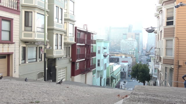 San Francisco Architecture -- New and Old Pigeons in flight amongst the classic Victorian Architecture of San Francisco's Telegraph Hill. A view towards Downtown and the Financial District. 19th century style stock videos & royalty-free footage