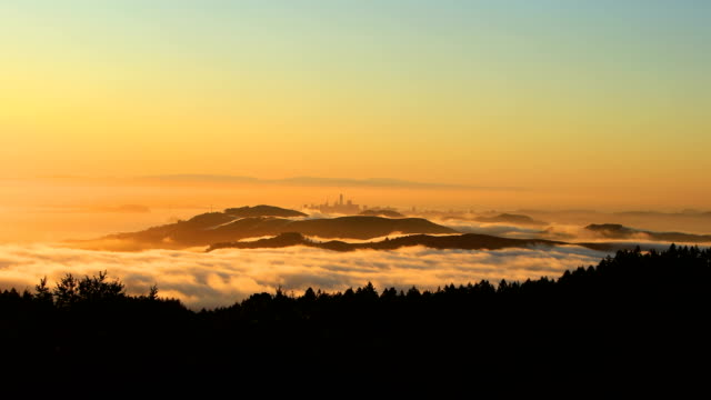 san francisco bay at sunrise - rotolare video stock e b–roll