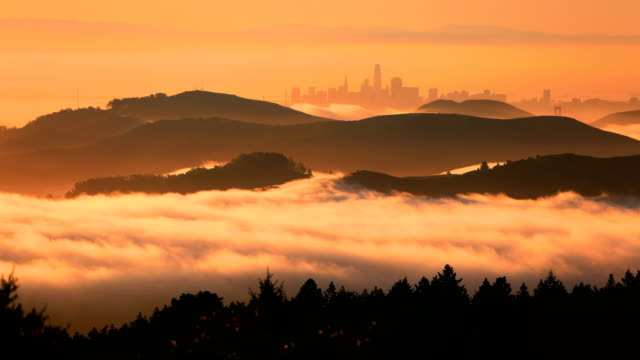 san francisco bay at sunrise - nebbia video stock e b–roll