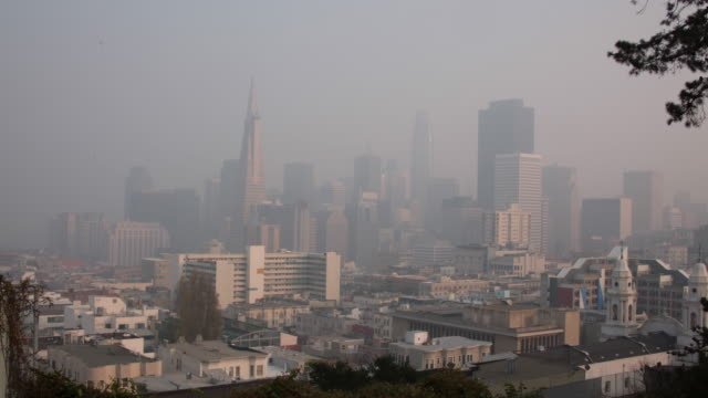 san francisco downtown california wildfire smoky view - smog video stock e b–roll