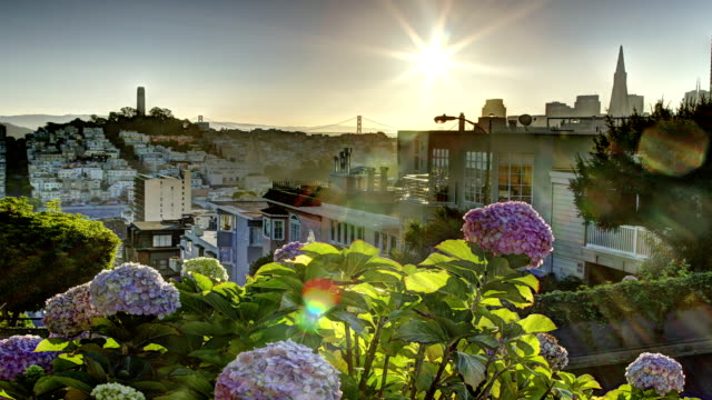 San Francisco Morning video