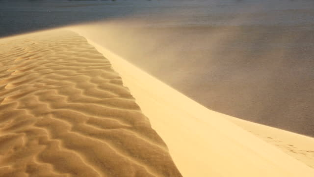 Sand blowing over the dunes video