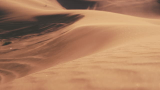 Sand Dunes in the Desert video